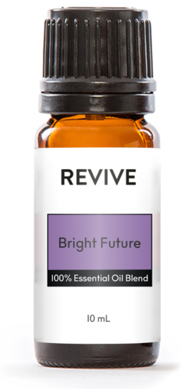 Get the best possible price by purchasing the WINTER BOX!